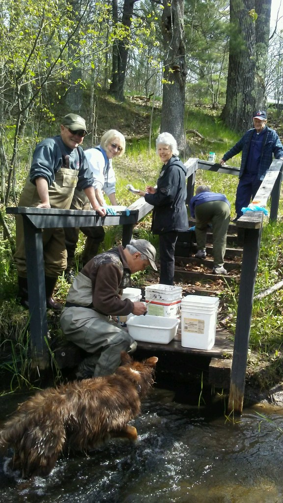 Macroinvertabrate Survey team May of 2017 – LMWCC Volunteers gauge water quality by collecting and identifying aquatic insects-foreground-background - Toby,( canine), Armas Soorus, Jim Squier, Joyce Durdel, Sylvie Squier, and Tim Phillips.