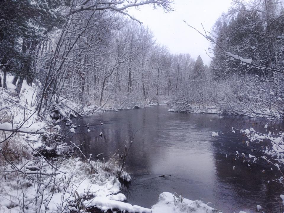 Little River Nov 2014